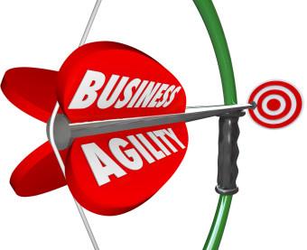 Agile בינה עסקית